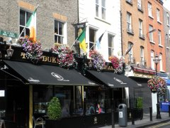 the_duke_dublin_1.JPG