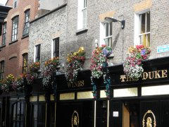 the_duke_dublin_2.JPG
